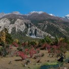 Manang Valley Autumn